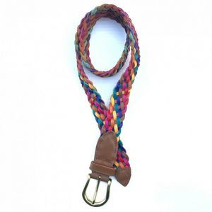 Braided Rainbow Leather Belt Small Gold Buckle